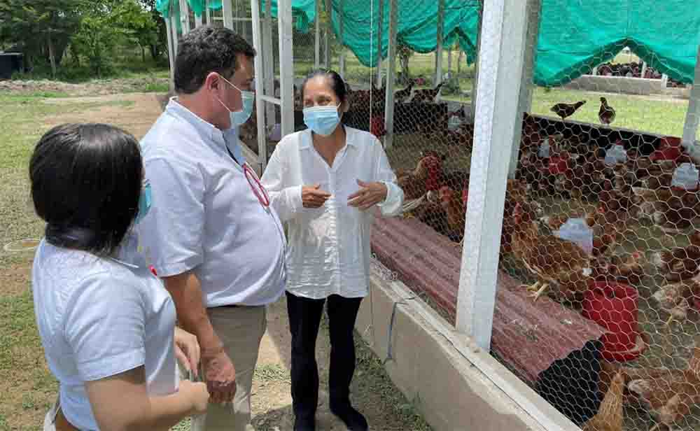 Drummond Ciudadela avícola, Algarrobo